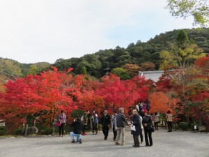 永観堂 (2)